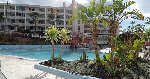 Vacaciones del sr frog tus vacaciones a precio de chollo for Apartamentos en el sur de tenerife ofertas